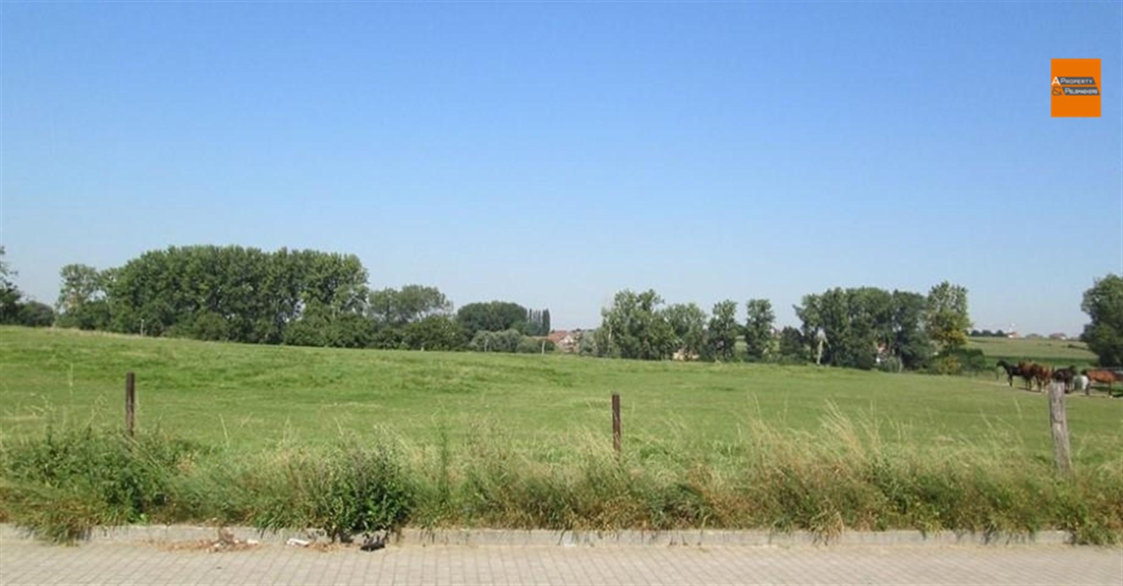 Image 4 : House IN 1600 SINT-PIETERS-LEEUW (Belgium) - Price 397.800 €