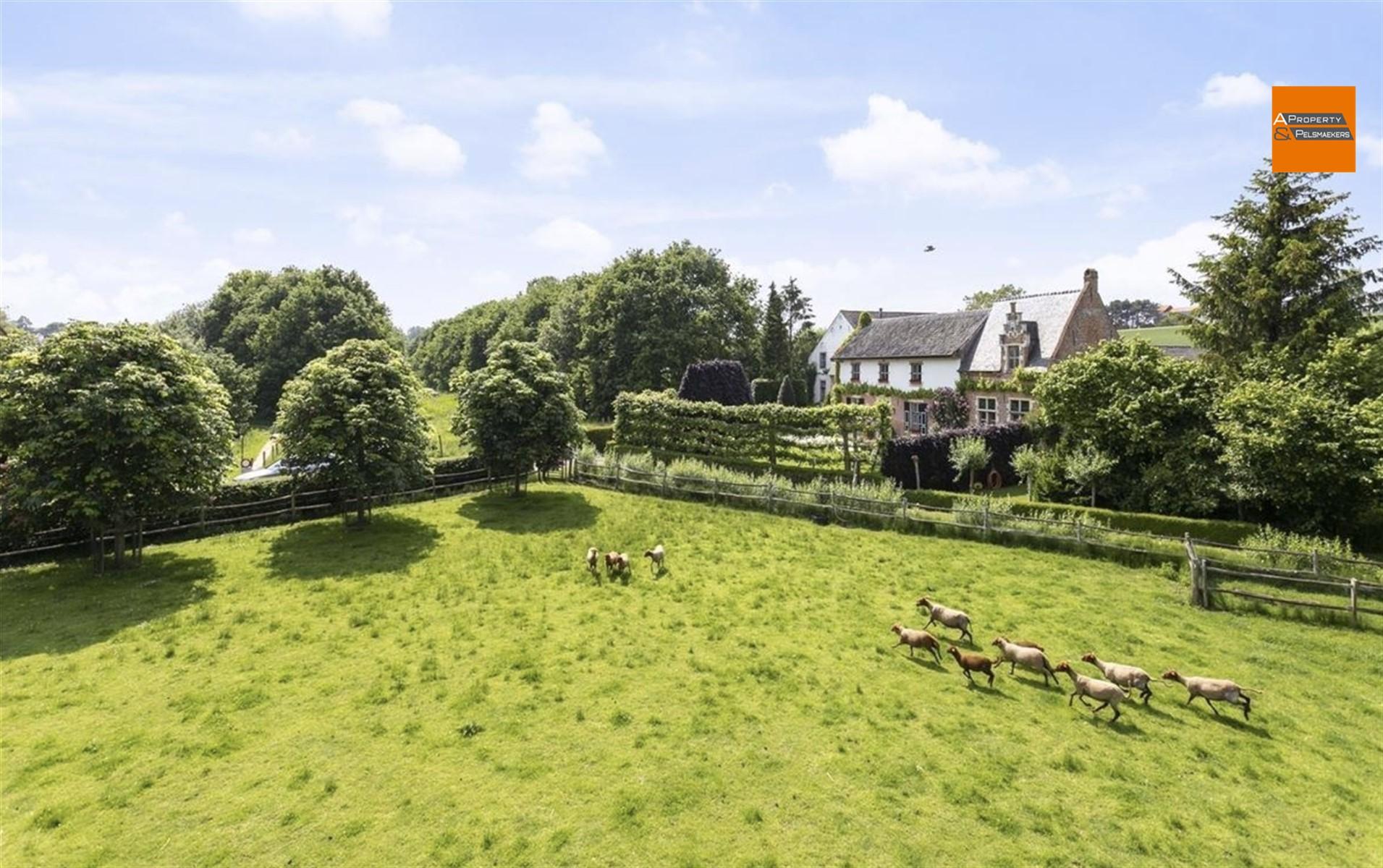 Foto 38 : Uitzonderlijk vastgoed in 3060 BERTEM (België) - Prijs € 1.295.000