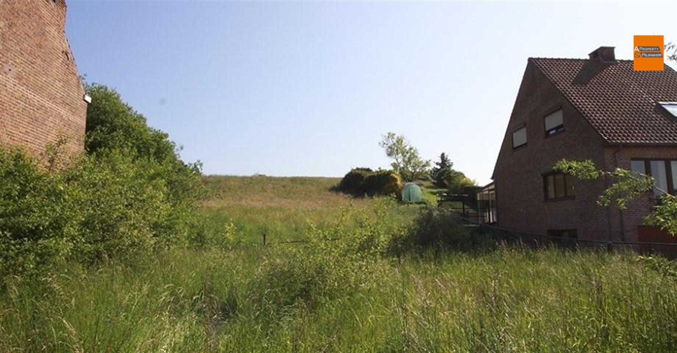 Foto 4 : Huis in 3080 DUISBURG (België) - Prijs € 437.000