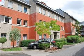 Goed gelegen appartement met terras en gemeenschappelijke tuin te huur te Sint-Niklaas