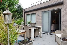 Gelijkvloers appartement met terras te huur in Zingem