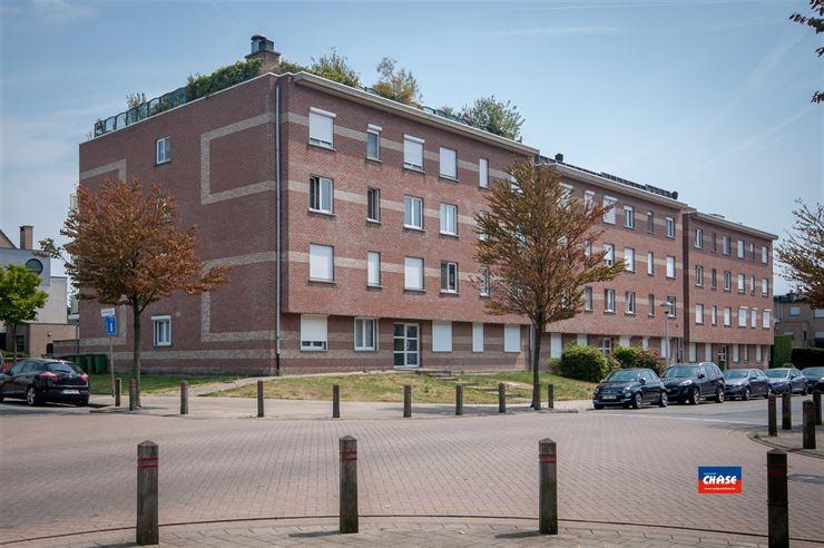 Dak appartement te 2660 HOBOKEN (België) - Prijs € 245.000