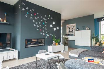 Foto 6 : Dak appartement te 2660 HOBOKEN (België) - Prijs € 359.000