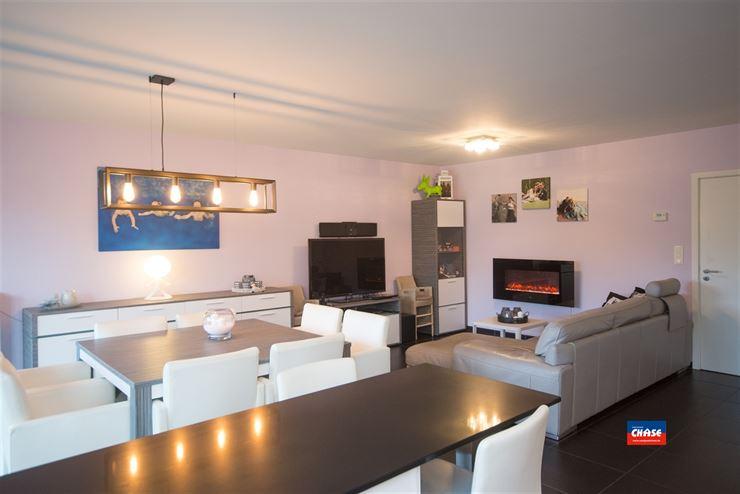 Appartement te 2520 OELEGEM (België) - Prijs € 840