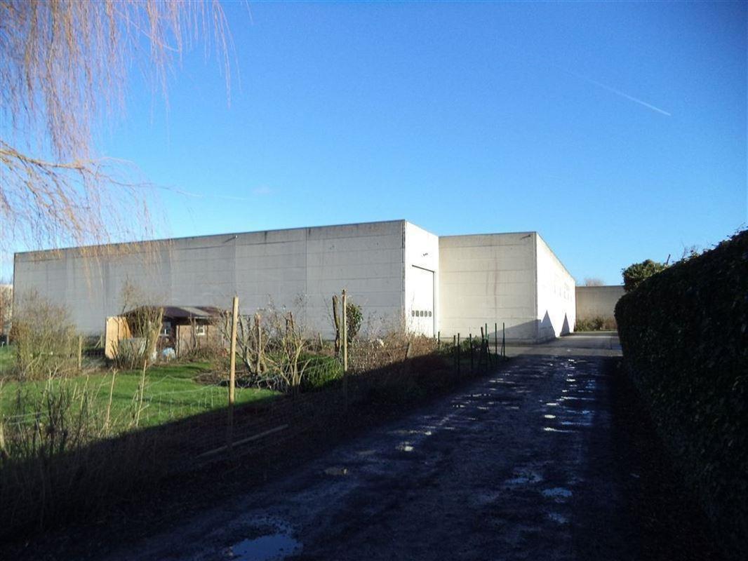 Foto 9 : Magazijn te 8890 DADIZELE (België) - Prijs € 1.344