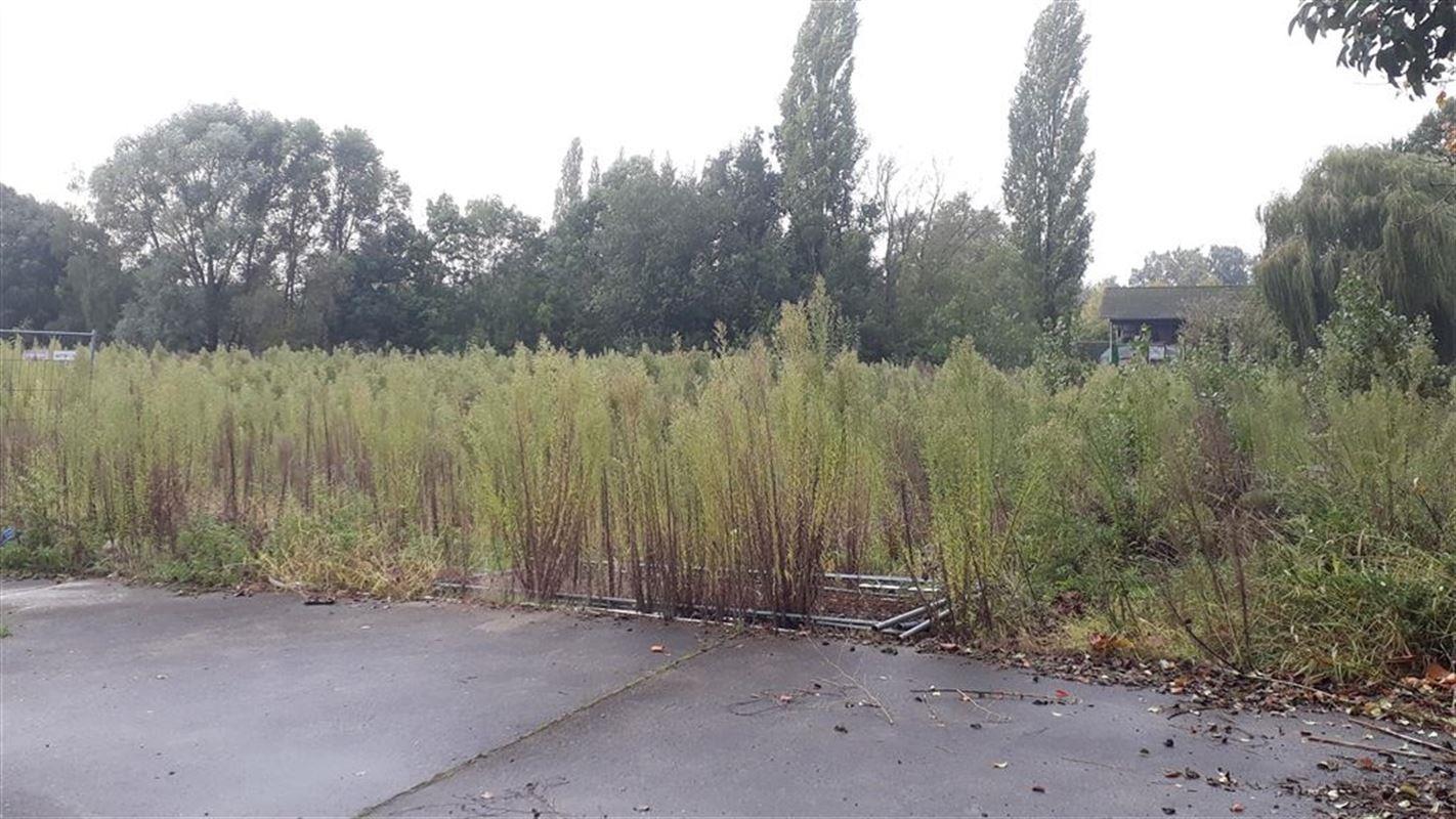 Foto 5 : Industriegrond te 8531 BAVIKHOVE (België) - Prijs € 450.000