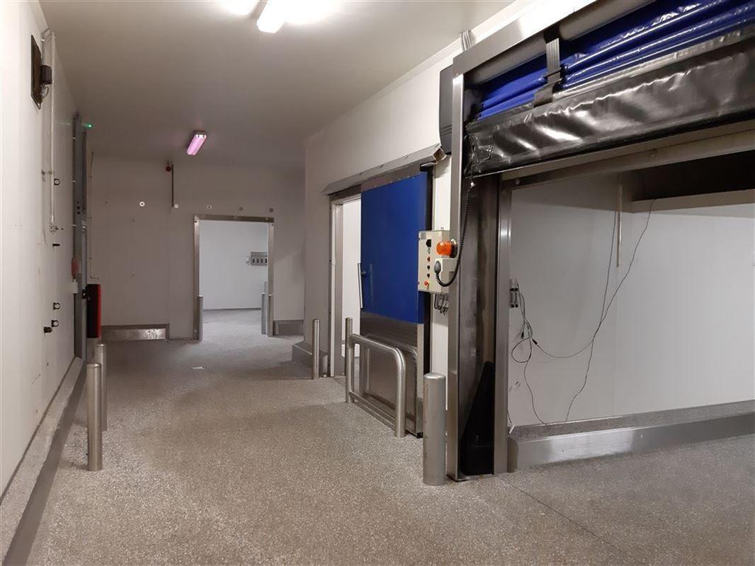 Foto 6 : Bedrijfsgebouwen te 9160 LOKEREN (België) - Prijs € 3.140.000