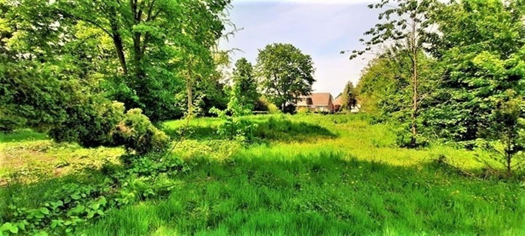 Foto 4 : Bouwgrond te 3190 BOORTMEERBEEK (België) - Prijs € 199.000