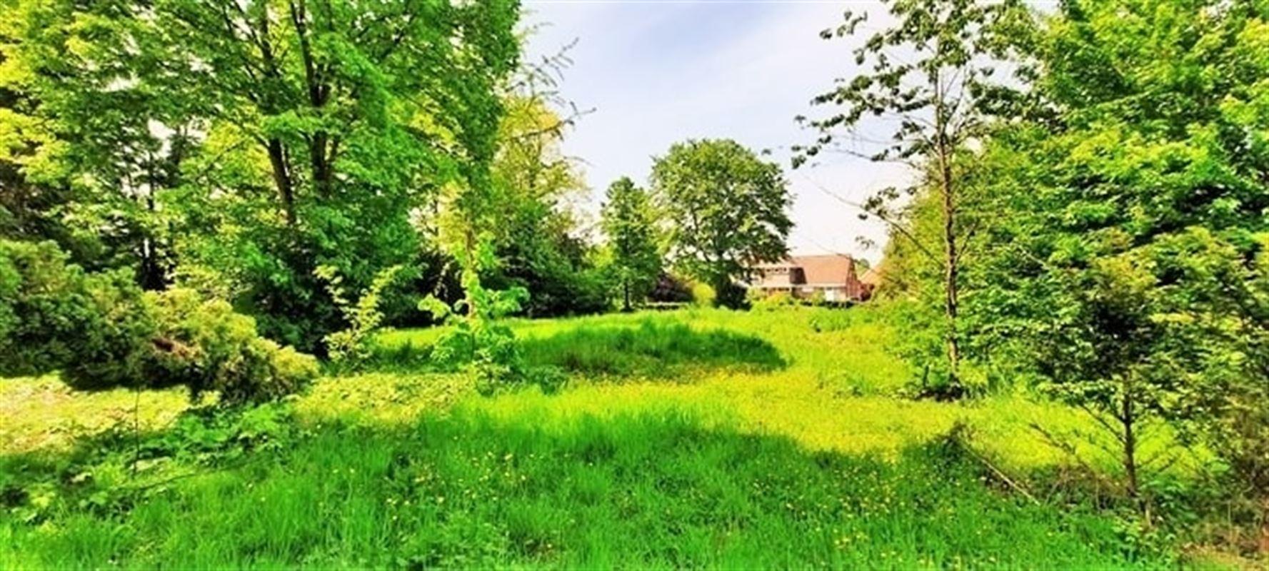 Foto 3 : Bouwgrond te 3190 BOORTMEERBEEK (België) - Prijs € 249.000