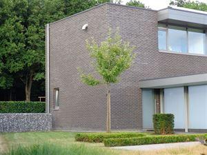 Foto 7 : Huis te 2230 HERSELT (België) - Prijs € 1.250