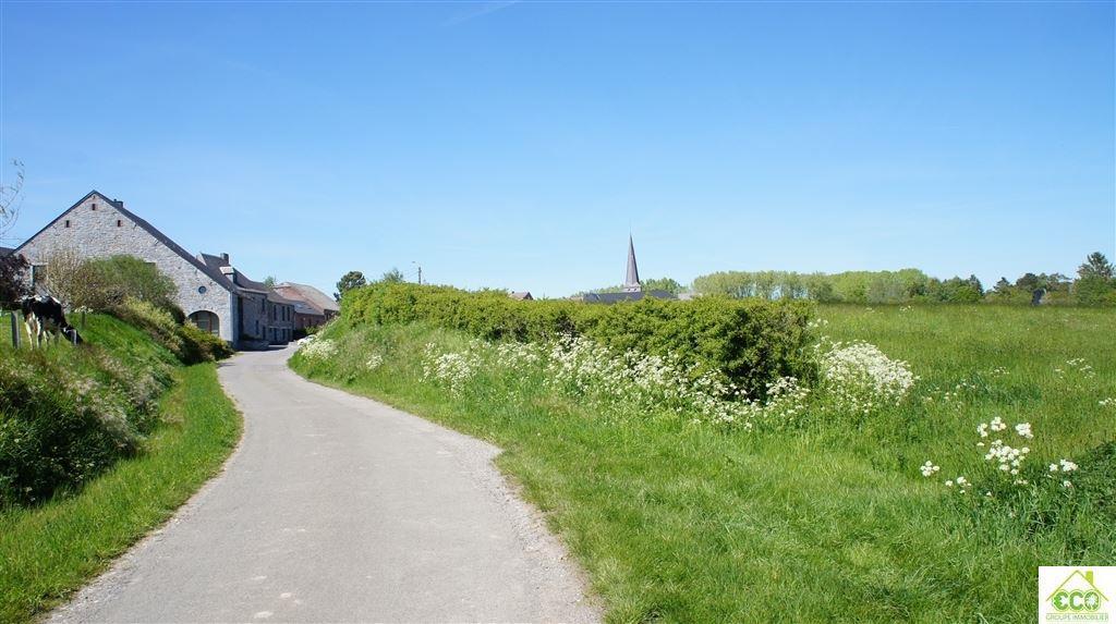 Image 1 : Terrain agricole à 5640 BIESME (Belgique) - Prix 25.000 €