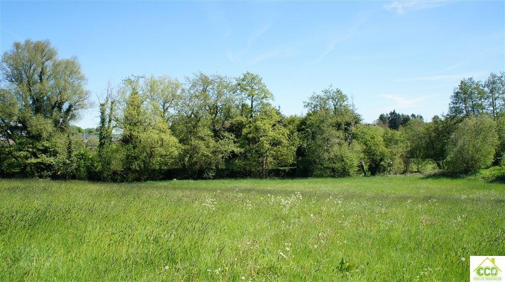 Image 5 : Terrain agricole à 5640 BIESME (Belgique) - Prix 25.000 €