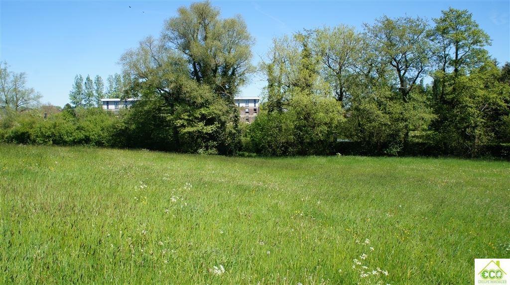 Image 7 : Terrain agricole à 5640 BIESME (Belgique) - Prix 25.000 €