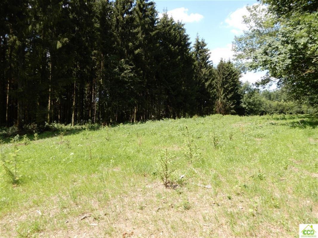 Image 1 : Terrain en zone forestière à 6830 POUPEHAN (Belgique) - Prix 12.500 €