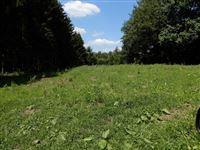 Image 2 : Terrain en zone forestière à 6830 POUPEHAN (Belgique) - Prix 12.500 €