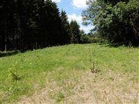 Image 3 : Terrain en zone forestière à 6830 POUPEHAN (Belgique) - Prix 12.500 €
