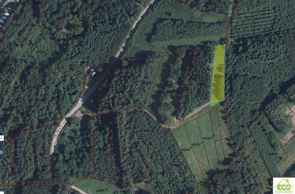 Image 5 : Terrain en zone forestière à 6830 POUPEHAN (Belgique) - Prix 12.500 €