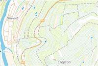 Image 8 : Terrain en zone forestière à 6830 POUPEHAN (Belgique) - Prix 12.500 €
