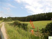 Image 1 : Terrain agricole à 6747 SAINT-LÉGER (Belgique) - Prix 14.500 €