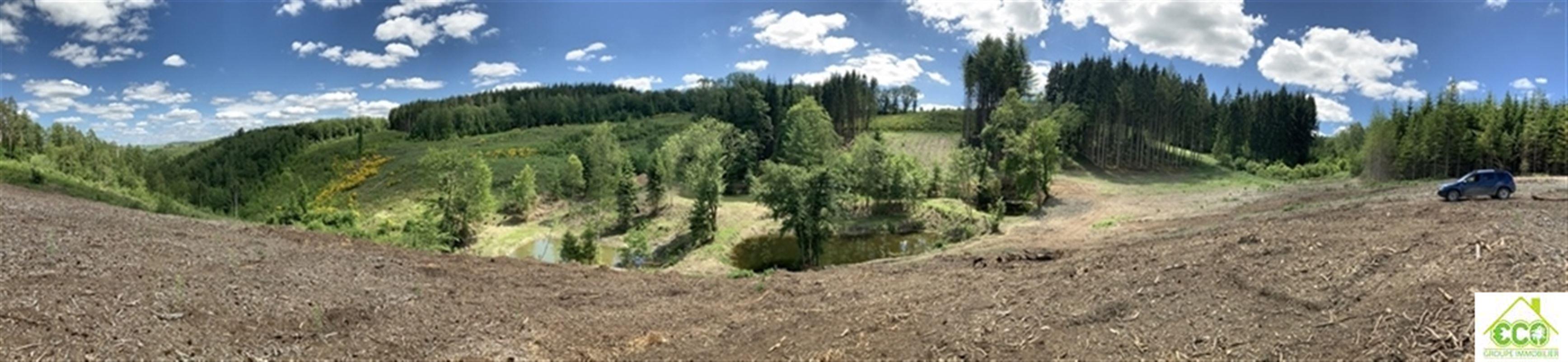 Image 1 : Terrain en zone forestière à 6980 LA ROCHE-EN-ARDENNE (Belgique) - Prix 145.000 €