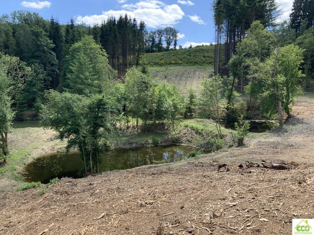 Image 3 : Terrain en zone forestière à 6980 LA ROCHE-EN-ARDENNE (Belgique) - Prix 145.000 €