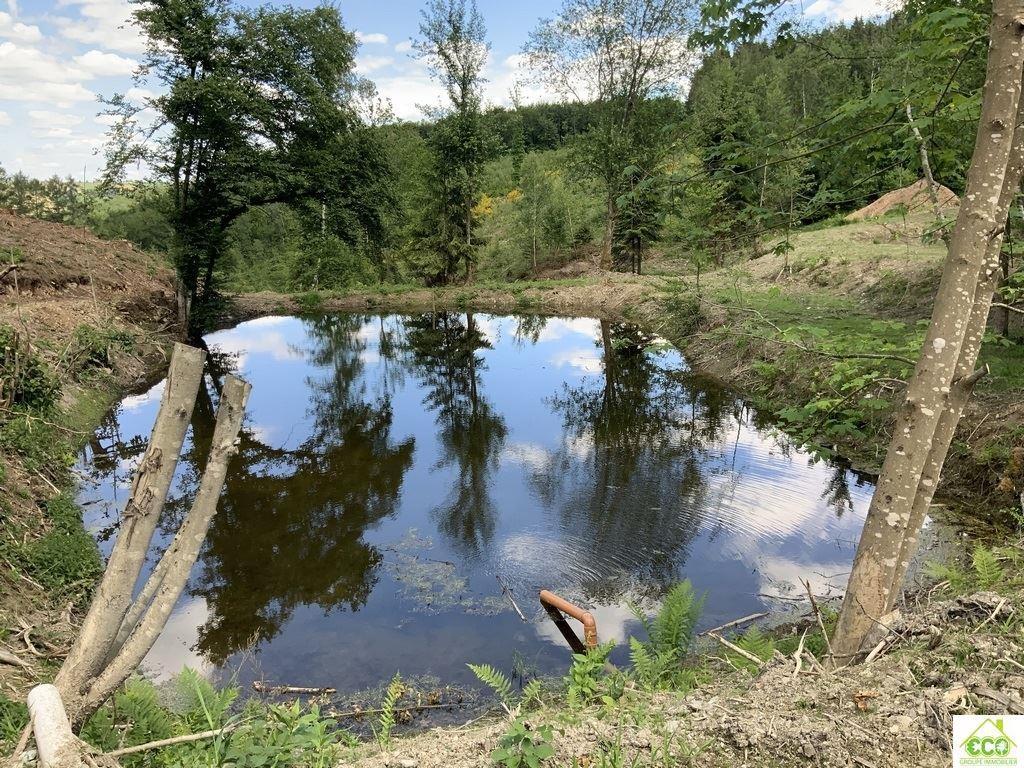 Image 4 : Terrain en zone forestière à 6980 LA ROCHE-EN-ARDENNE (Belgique) - Prix 145.000 €