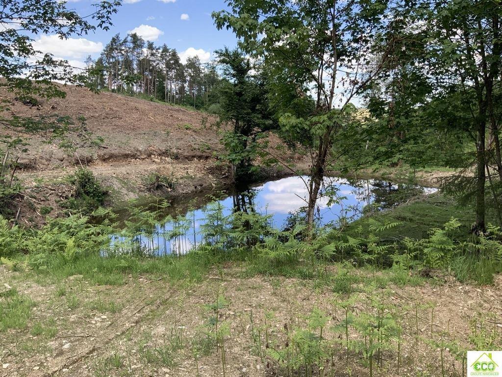 Image 5 : Terrain en zone forestière à 6980 LA ROCHE-EN-ARDENNE (Belgique) - Prix 145.000 €