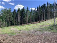 Image 7 : Terrain en zone forestière à 6980 LA ROCHE-EN-ARDENNE (Belgique) - Prix 145.000 €
