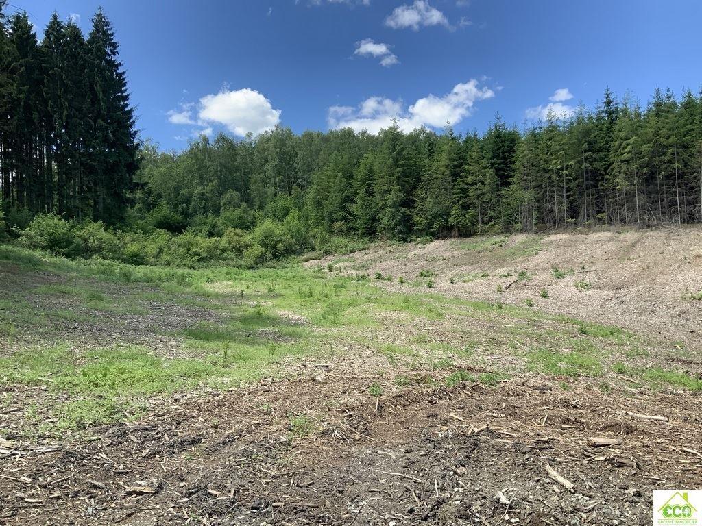 Image 8 : Terrain en zone forestière à 6980 LA ROCHE-EN-ARDENNE (Belgique) - Prix 145.000 €