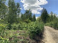 Image 10 : Terrain en zone forestière à 6980 LA ROCHE-EN-ARDENNE (Belgique) - Prix 145.000 €