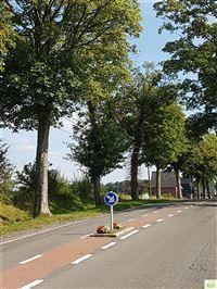 Image 5 : Terrain à bâtir à 5330 ASSESSE (Belgique) - Prix 250.000 €
