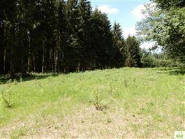 Terrain en zone forestière à 6830 POUPEHAN (Belgique) - Prix 12.500 €