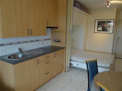 GEMEUBELDE STUDIO TE HUUR OP JAARBASIS - woonkamer met zonneterras met zicht op de Similiwijk - ingerichte keuken - ingerichte badkamer met douche en ...