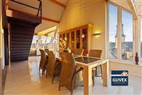 Foto 5 : Penthouse te 3800 SINT-TRUIDEN (België) - Prijs € 360.000