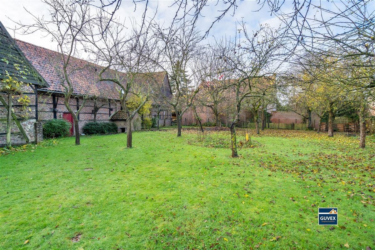 Foto 34 : Hoeve te 3800 ZEPPEREN (België) - Prijs € 475.000