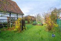 Foto 35 : Hoeve te 3800 ZEPPEREN (België) - Prijs € 475.000