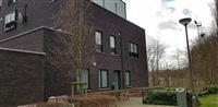 Foto 19 : Gelijkvloers te 2180 EKEREN (België) - Prijs € 238.000