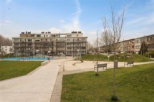 Foto 20 : Huis te 2170 MERKSEM (België) - Prijs € 285.000
