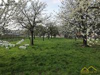 Foto 1 : Bouwgrond te 3850 KOZEN (België) - Prijs € 145.000