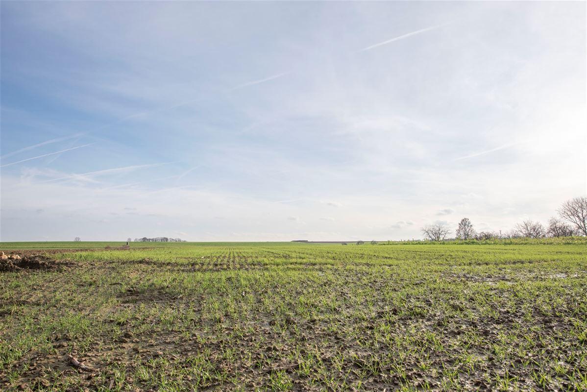Foto 6 : Bouwgrond te 3770 MILLEN (België) - Prijs € 125.000