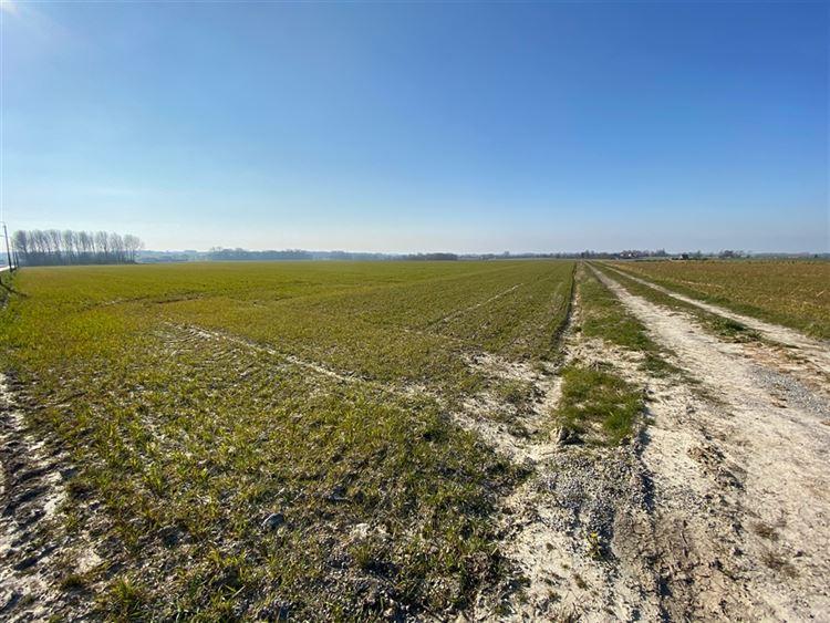 Terrain à 7610 RUMES (Belgique) - Prix 50.000 €
