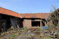 Foto 7 : Hoeve te 3721 KORTESSEM (België) - Prijs € 275.000