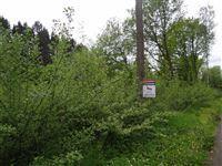 Image 3 : Terrains cultivés  à 6690 VIELSALM (Belgique) - Prix 10.000 €