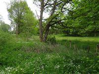 Image 5 : Terrains cultivés  à 6690 VIELSALM (Belgique) - Prix 10.000 €
