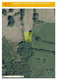 Image 8 : Terrains cultivés  à 6690 VIELSALM (Belgique) - Prix 10.000 €