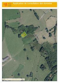 Image 10 : Terrains cultivés  à 6690 VIELSALM (Belgique) - Prix 10.000 €