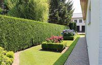 Foto 38 : Villa te 3930 Hamont (België) - Prijs Prijs op aanvraag