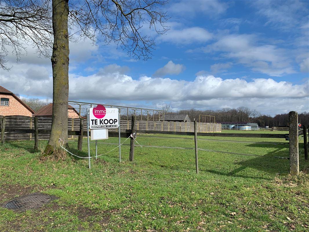Foto 2 : Bouwgrond te 3930 ACHEL (België) - Prijs € 199.000