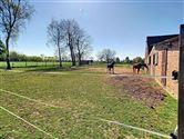 Image 30 :  IN 3454 GEETBETS (Belgium) - Price 585.000 €