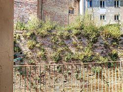 Image 3 :  IN 65014 LORETO APRUTINO (Italia) - Price 63.000 €